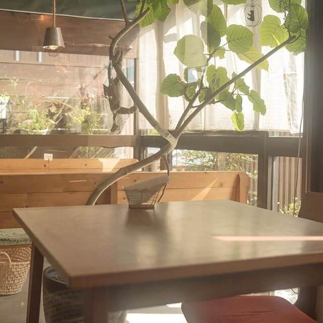 きなこカフェ